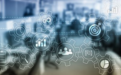 The process of performance management
